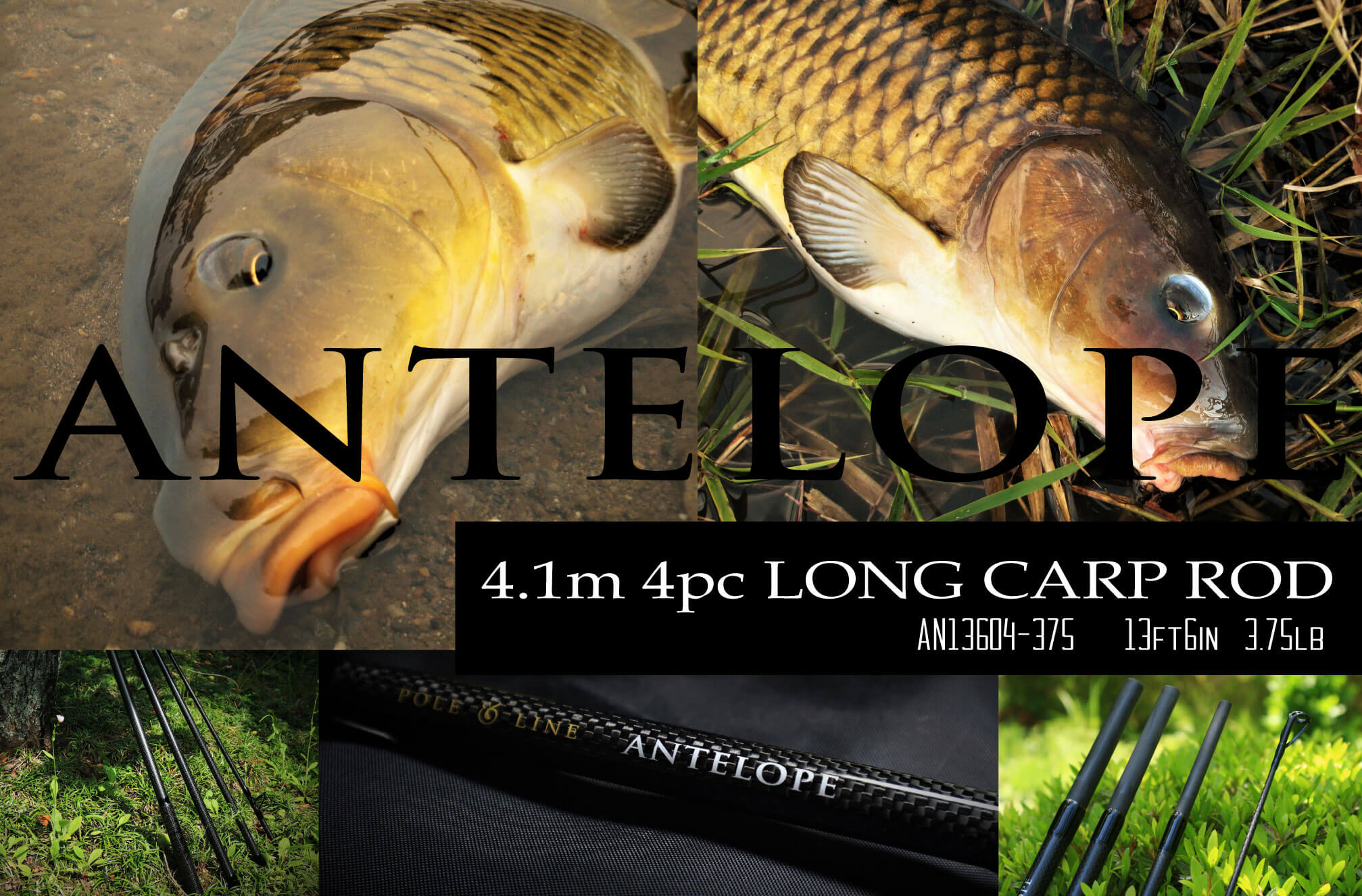 ANTELOPE 13ft6in 3.75lbカープロッド