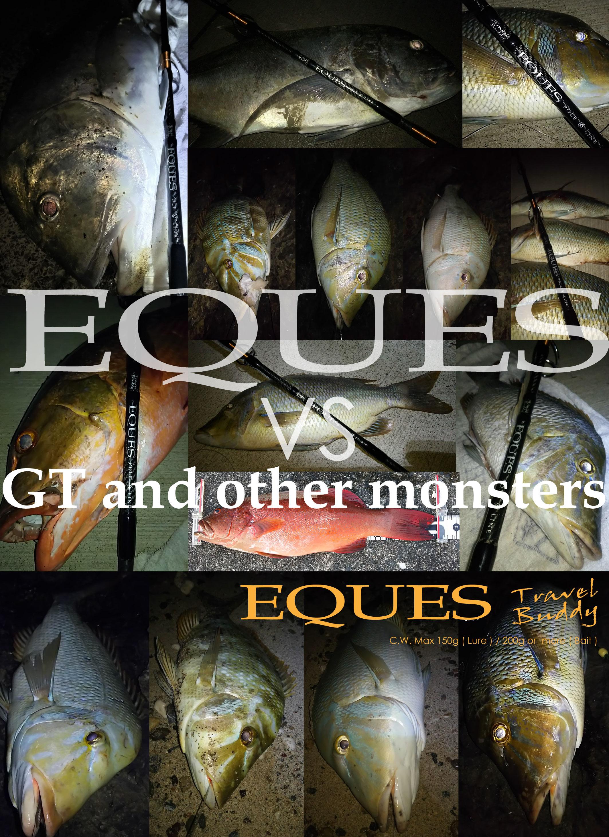 エクエス9ft3ピース怪魚/GTロッド