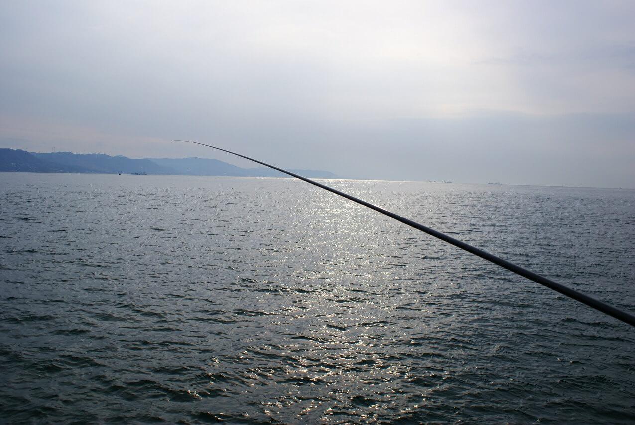 延べ竿でコブダイ釣り