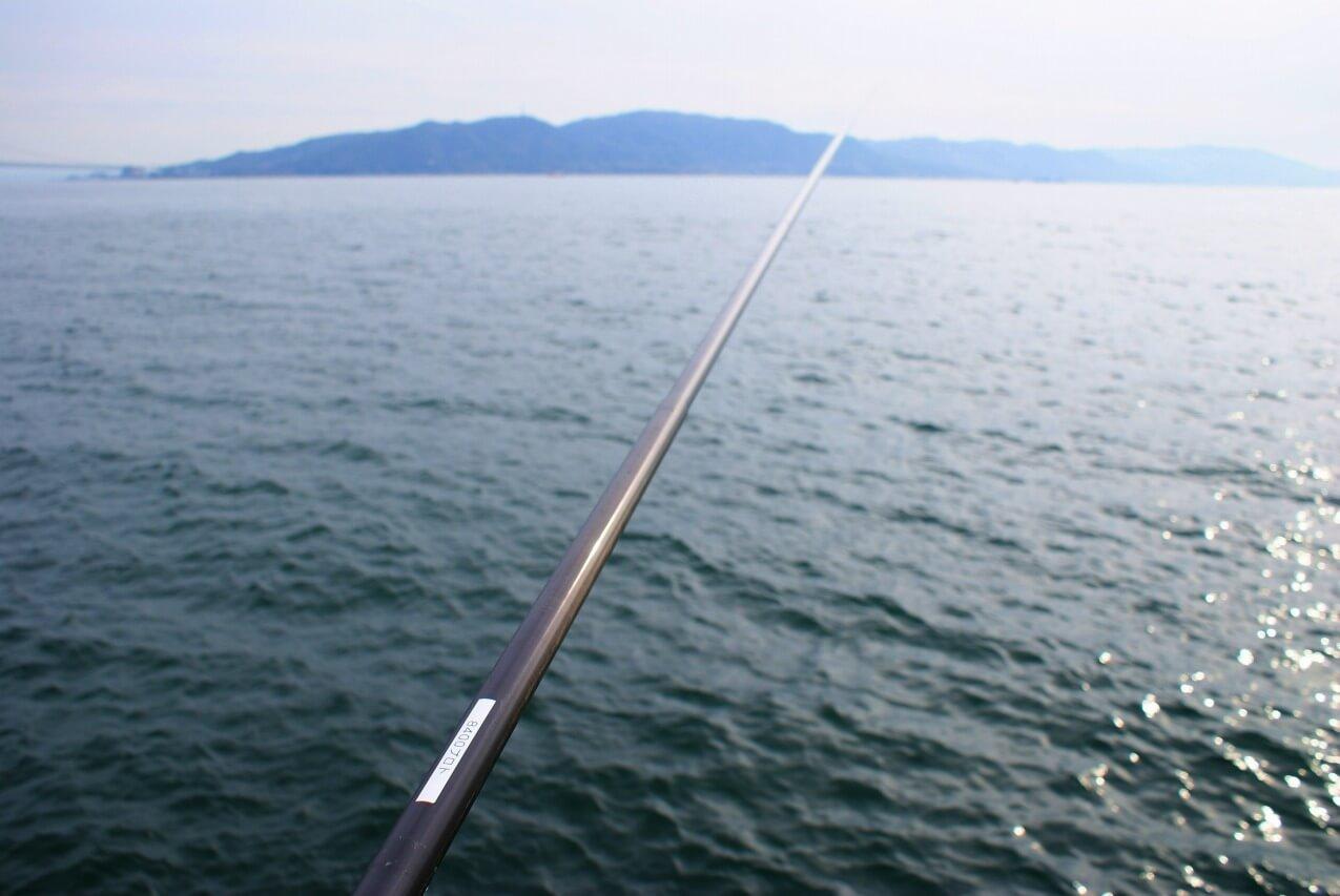 コブダイの延べ竿での釣り